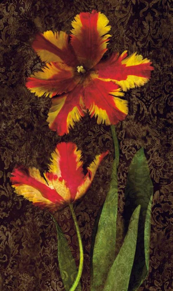 konfigurieren des Kunstdrucks in Wunschgröße Decorative Tulips II von Seba, John