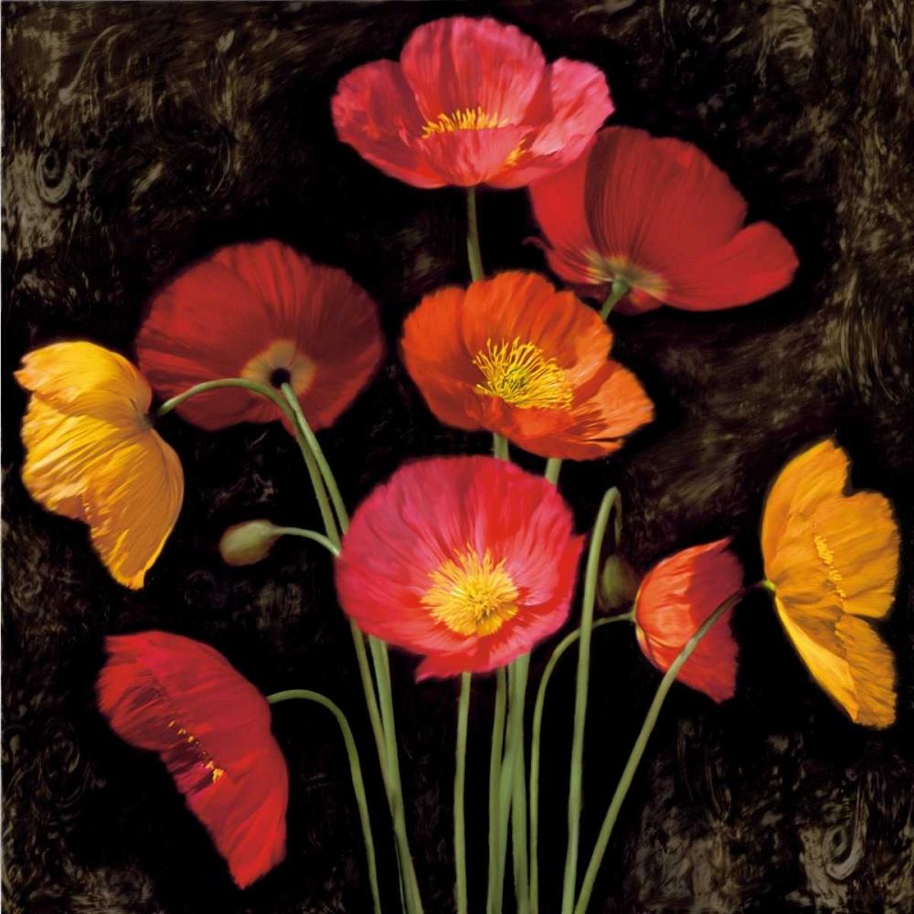 konfigurieren des Kunstdrucks in Wunschgröße Poppy Bouquet I von Seba, John