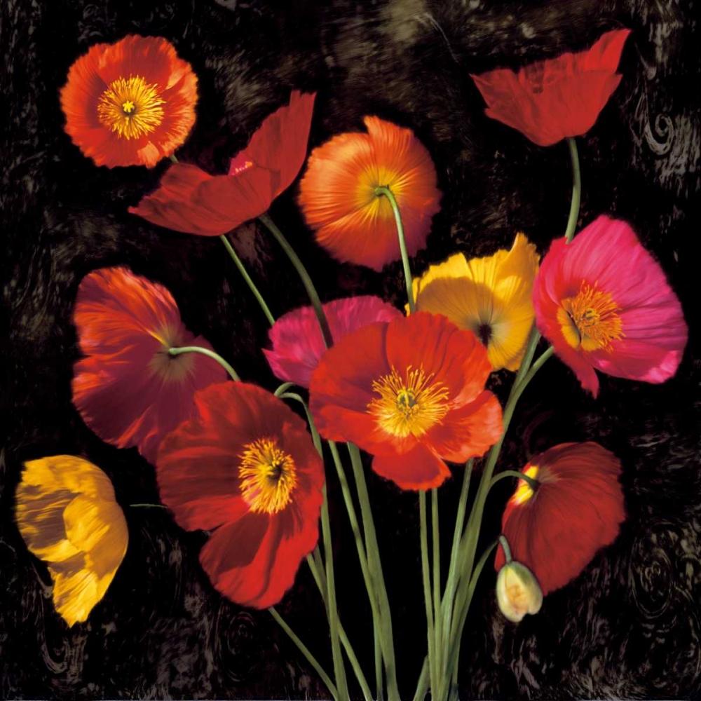 konfigurieren des Kunstdrucks in Wunschgröße Poppy Bouquet II von Seba, John