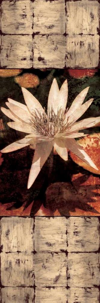 konfigurieren des Kunstdrucks in Wunschgröße Waterlily Panel I von Seba, John