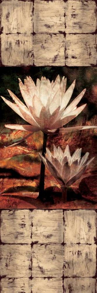 konfigurieren des Kunstdrucks in Wunschgröße Waterlily Panel II von Seba, John