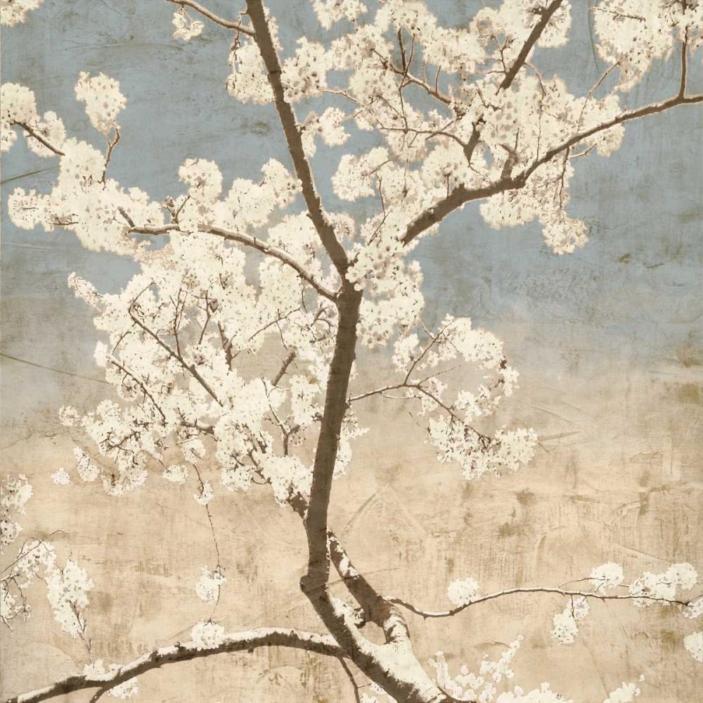 konfigurieren des Kunstdrucks in Wunschgröße Cherry Blossoms I von Seba, John