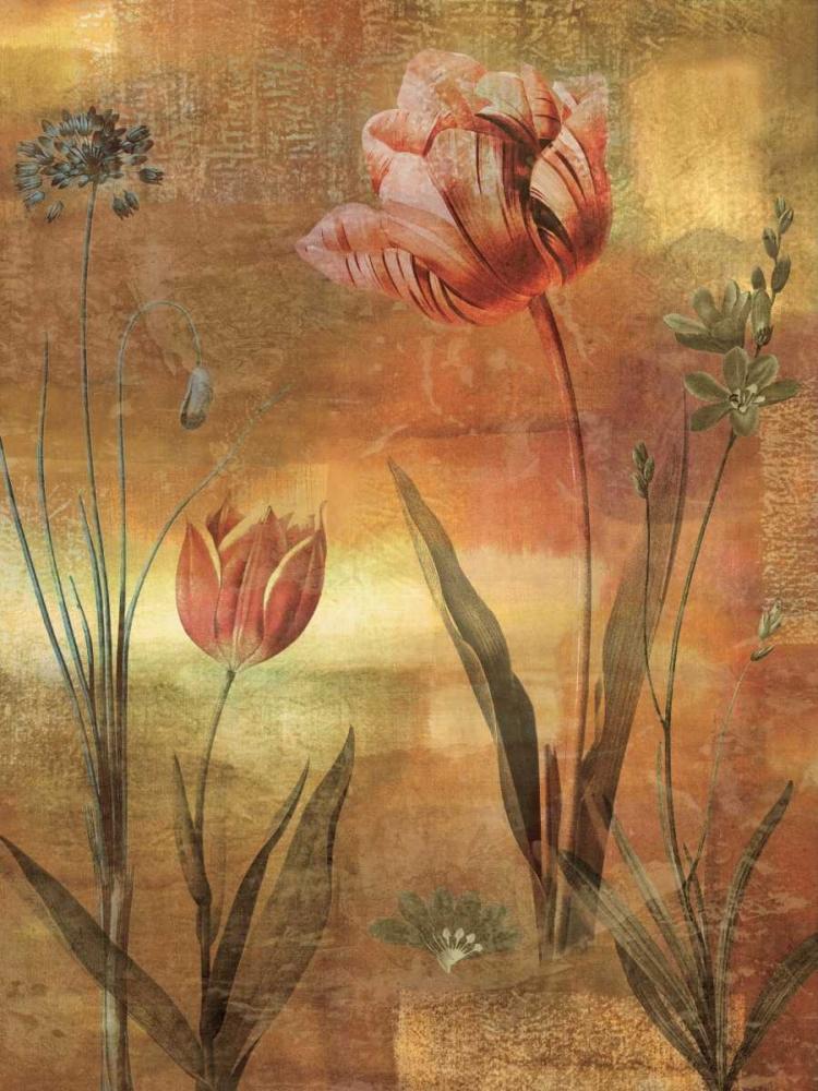 konfigurieren des Kunstdrucks in Wunschgröße Tulip Garden II von Seba, John