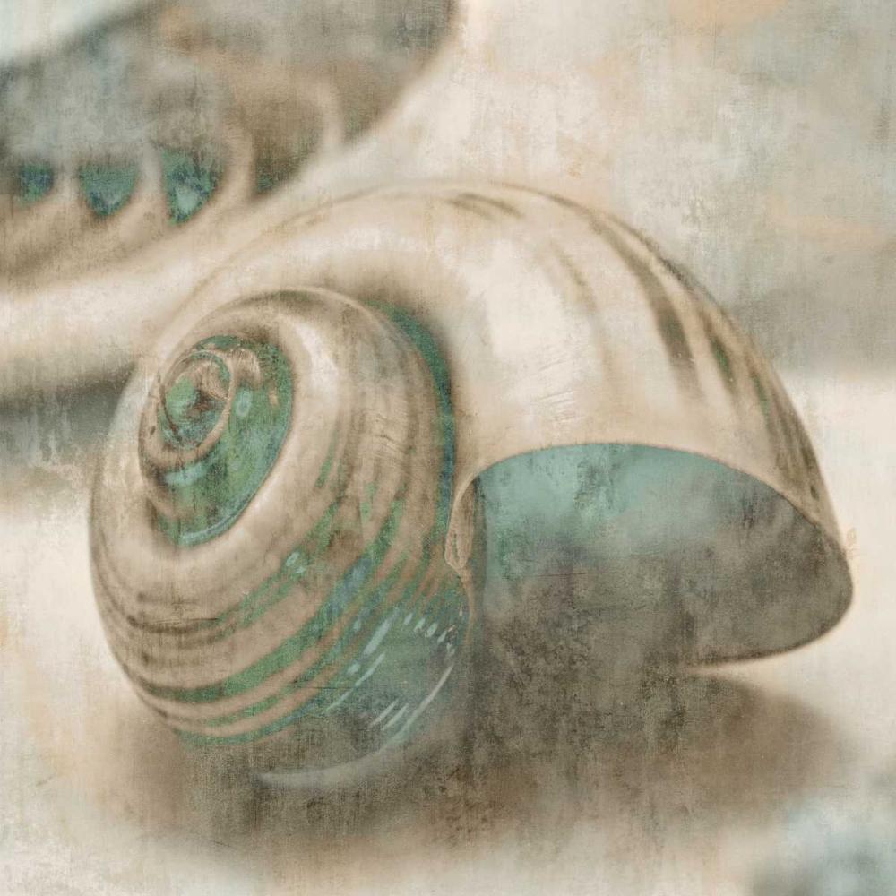 konfigurieren des Kunstdrucks in Wunschgröße Coastal Gems II von Seba, John