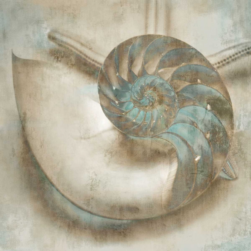 konfigurieren des Kunstdrucks in Wunschgröße Coastal Gems IV von Seba, John