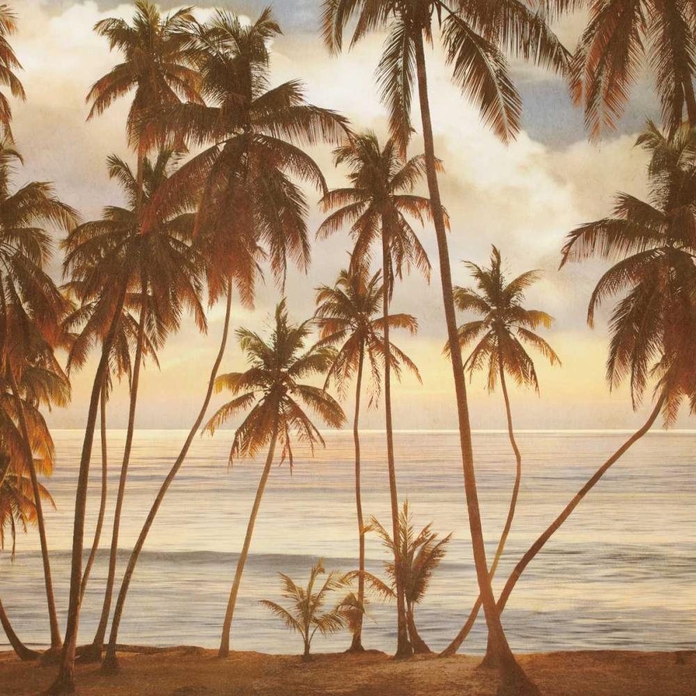 konfigurieren des Kunstdrucks in Wunschgröße Palms on the Water I von Seba, John
