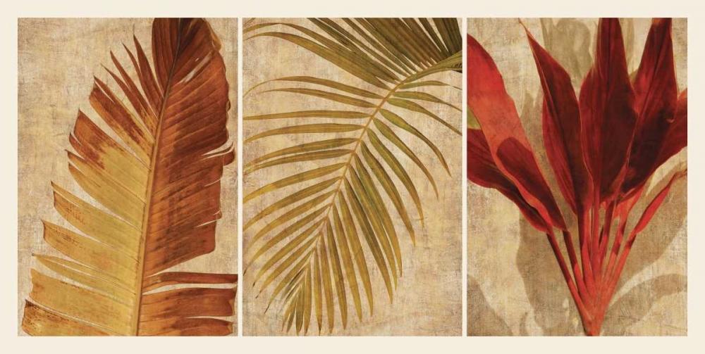konfigurieren des Kunstdrucks in Wunschgröße Palm Vista I von Seba, John