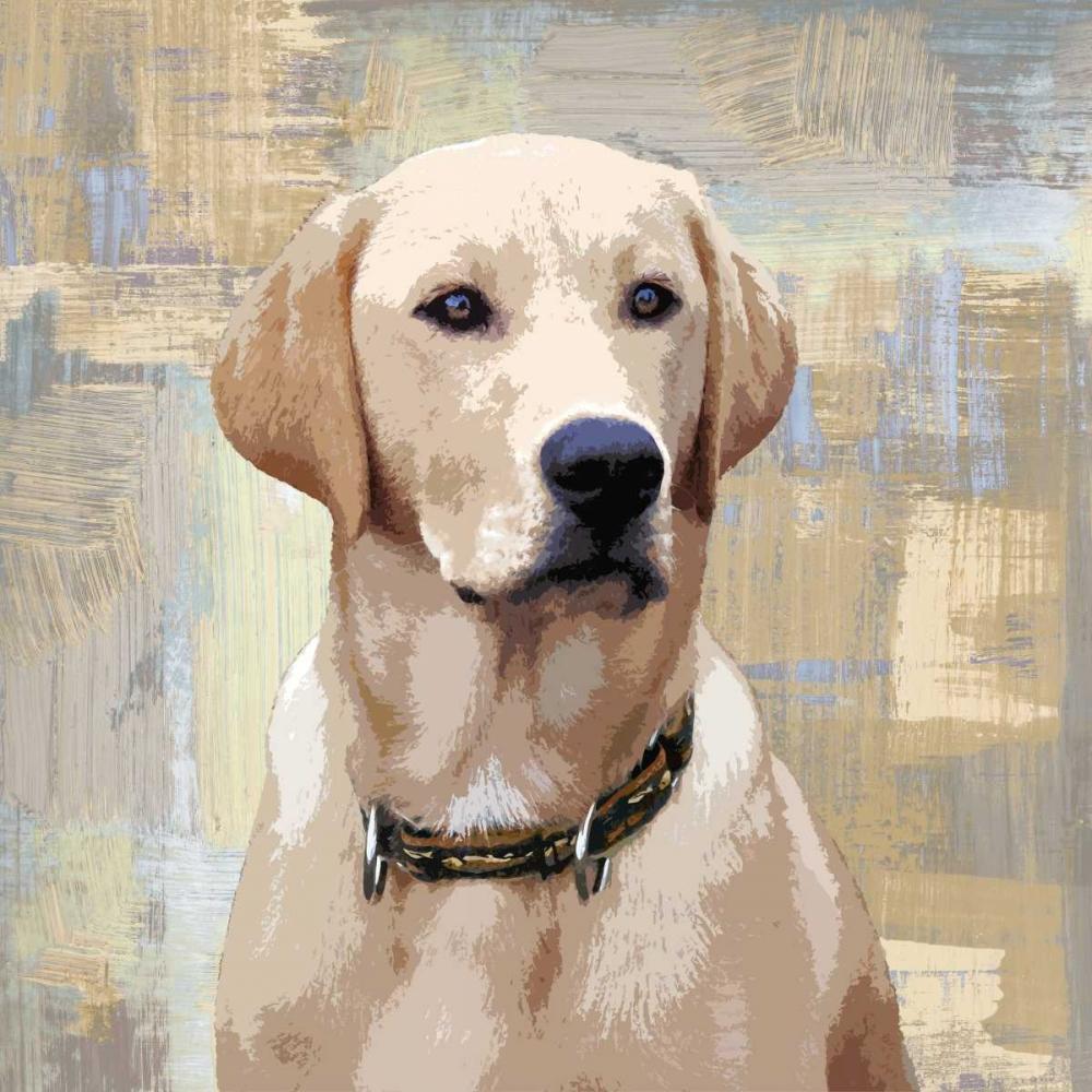 konfigurieren des Kunstdrucks in Wunschgröße Labrador Retriever von Rodgers, Keri