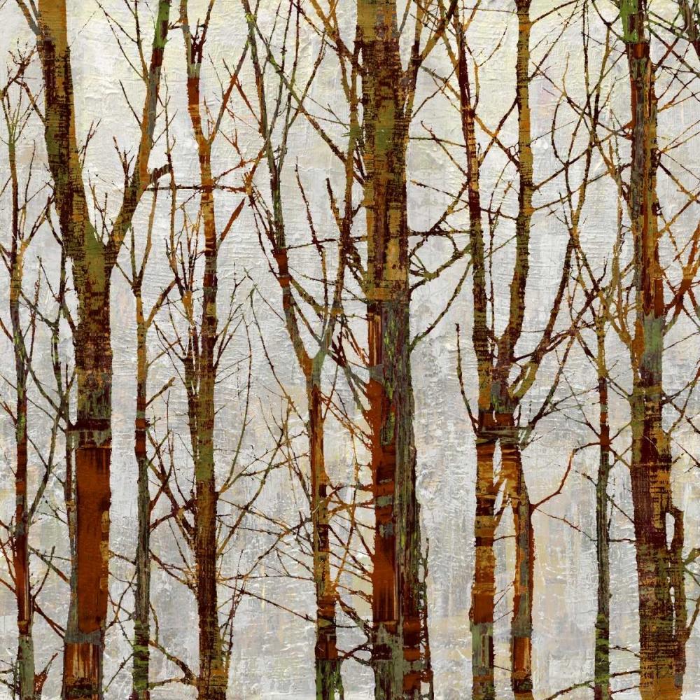 konfigurieren des Kunstdrucks in Wunschgröße Through The Trees II von Webster, Kyle