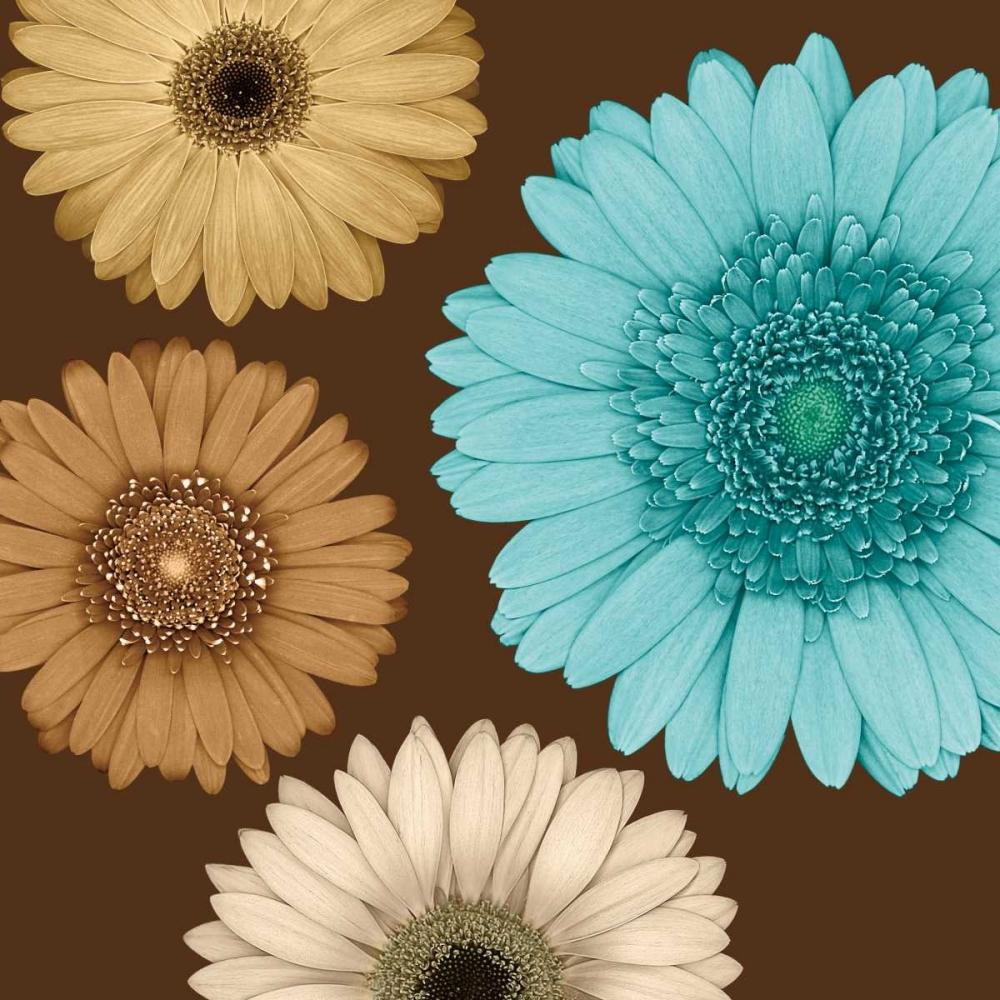 konfigurieren des Kunstdrucks in Wunschgröße Daisy Quartet II von Blake, Lindsay