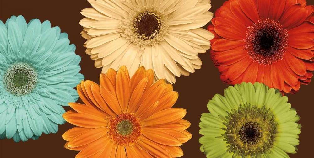konfigurieren des Kunstdrucks in Wunschgröße Daisys Friends von Blake, Lindsay