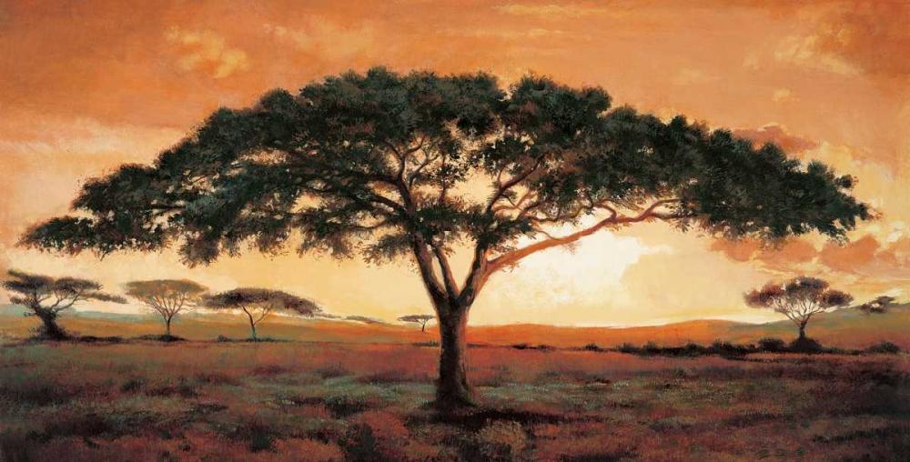 konfigurieren des Kunstdrucks in Wunschgröße Memories of Masai Mara von Madou