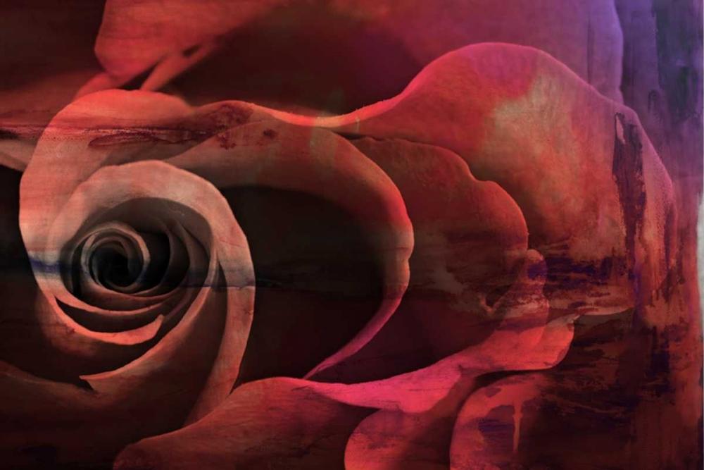 konfigurieren des Kunstdrucks in Wunschgröße Floral Collaboration I von Oppenheimer, Michelle