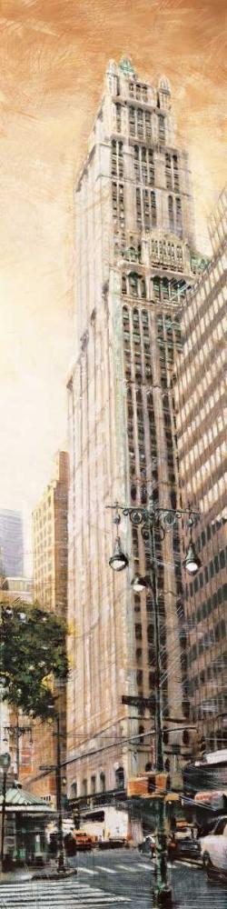konfigurieren des Kunstdrucks in Wunschgröße The Woolworth Building von Daniels, Matthew