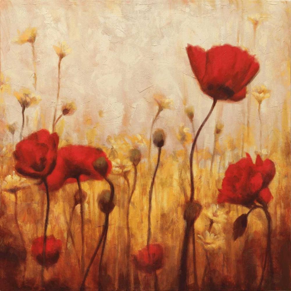 konfigurieren des Kunstdrucks in Wunschgröße Poppies and Daisies II von Carter, Natalie
