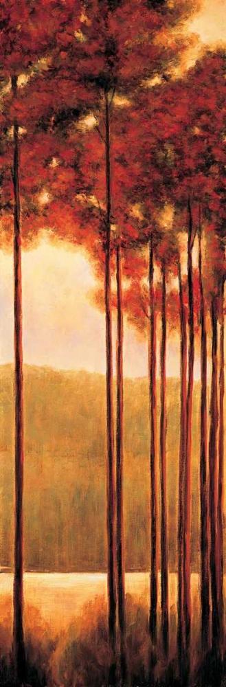 konfigurieren des Kunstdrucks in Wunschgröße Through the Woods II von Thomas, Neil