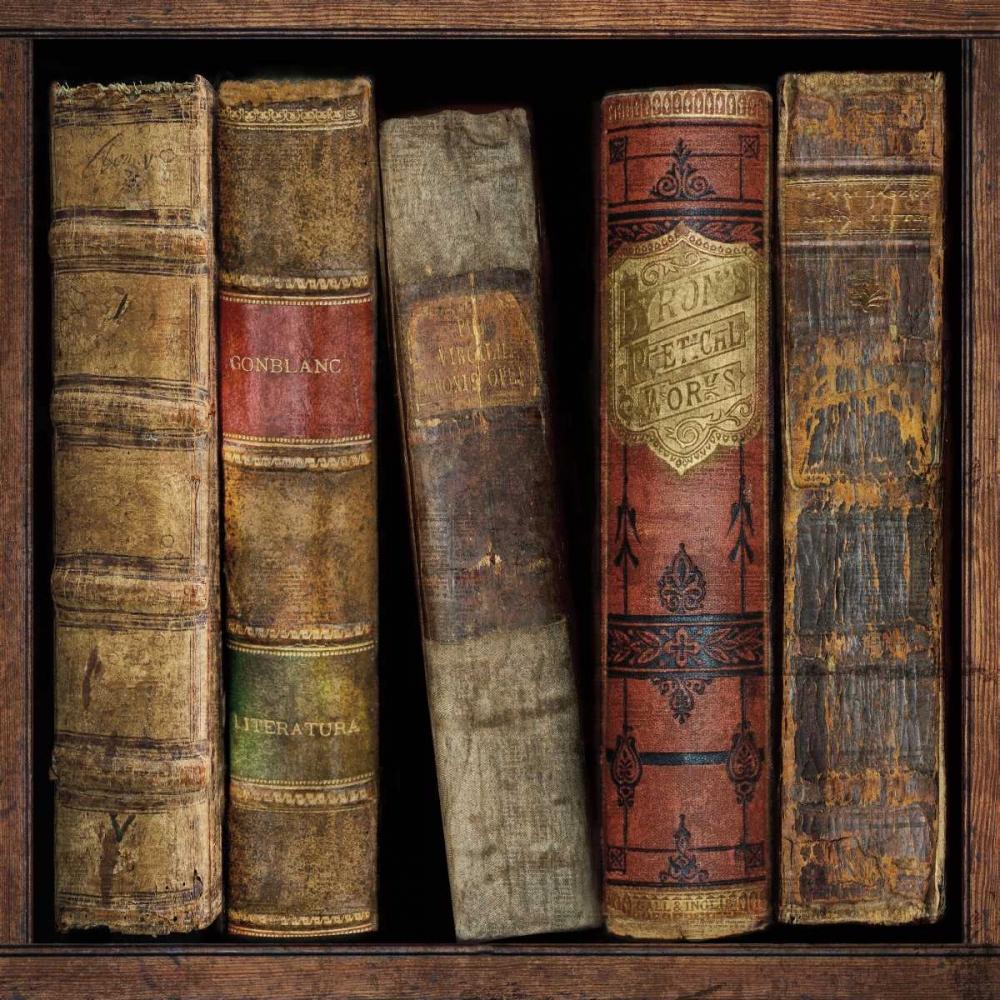 konfigurieren des Kunstdrucks in Wunschgröße In The Library I von Brennan, Russell