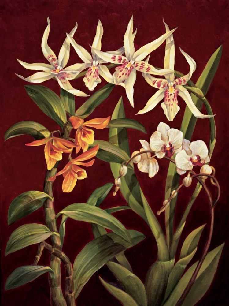 konfigurieren des Kunstdrucks in Wunschgröße Orchid Trio I von Jimenez, Rodolfo