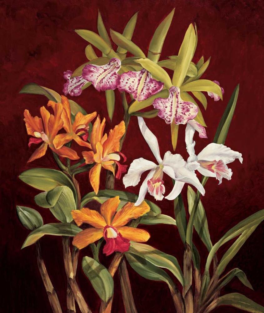 konfigurieren des Kunstdrucks in Wunschgröße Orchid Trio II von Jimenez, Rodolfo