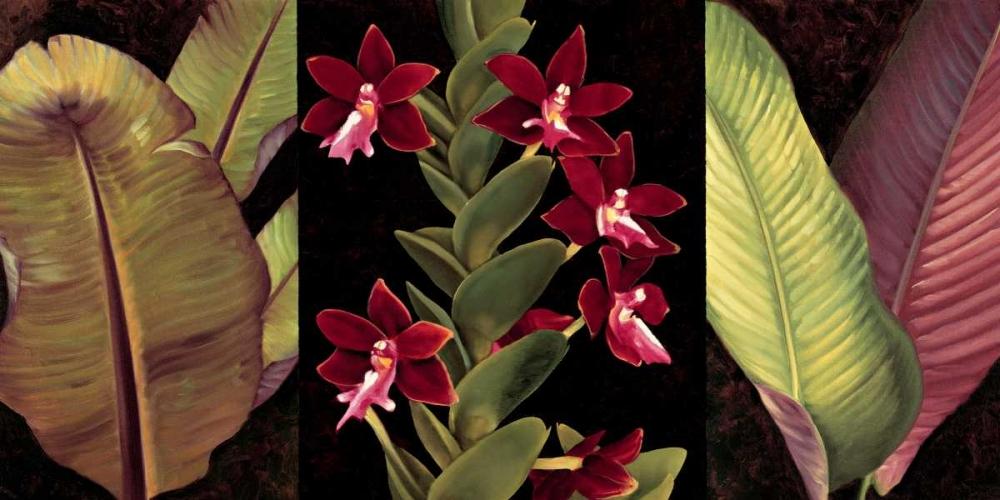 konfigurieren des Kunstdrucks in Wunschgröße Red Orchids and Palm Leaves von Jimenez, Rodolfo