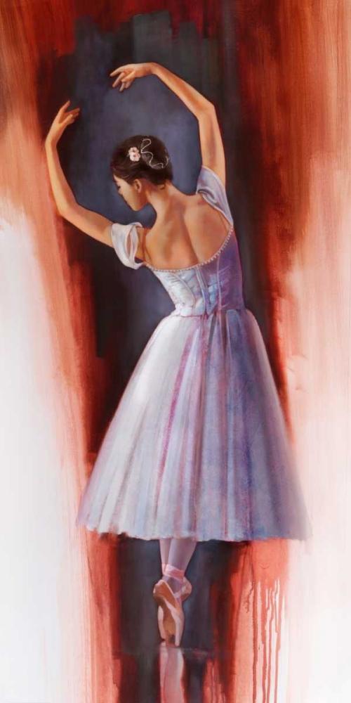 konfigurieren des Kunstdrucks in Wunschgröße Ballet Dream von Di Scenza, Ron