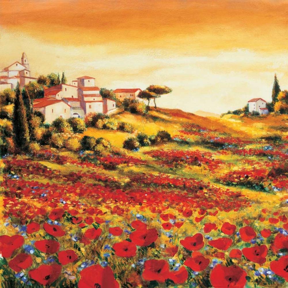 konfigurieren des Kunstdrucks in Wunschgröße Valley of Poppies von Leblanc, Richard