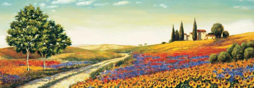 konfigurieren des Kunstdrucks in Wunschgröße Morning in the Valley von Leblanc, Richard