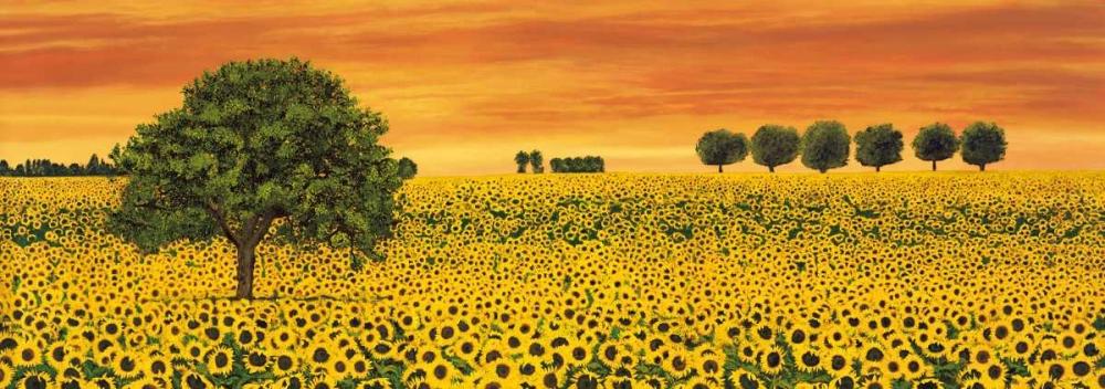 konfigurieren des Kunstdrucks in Wunschgröße Field of Sunflowers von Leblanc, Richard