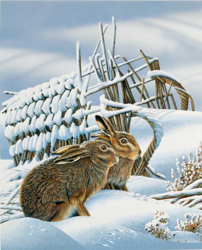 konfigurieren des Kunstdrucks in Wunschgröße Bunnies in the snow von Weenink, Jan