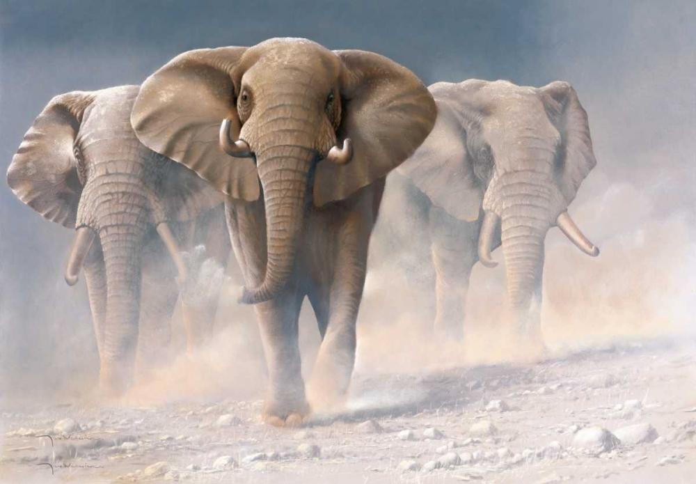 konfigurieren des Kunstdrucks in Wunschgröße Running elephants I von Weenink, Jan