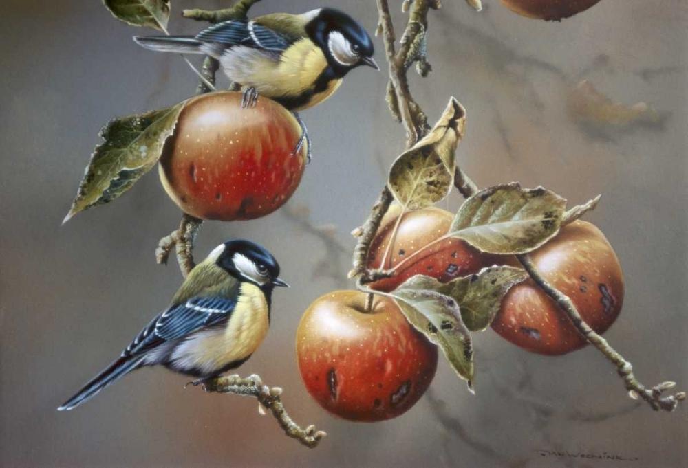 konfigurieren des Kunstdrucks in Wunschgröße Two birds with apples von Weenink, Jan