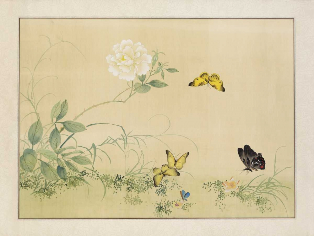 White Rose and Butterflies von Unknown <br> max. 119 x 91cm <br> Preis: ab 10€