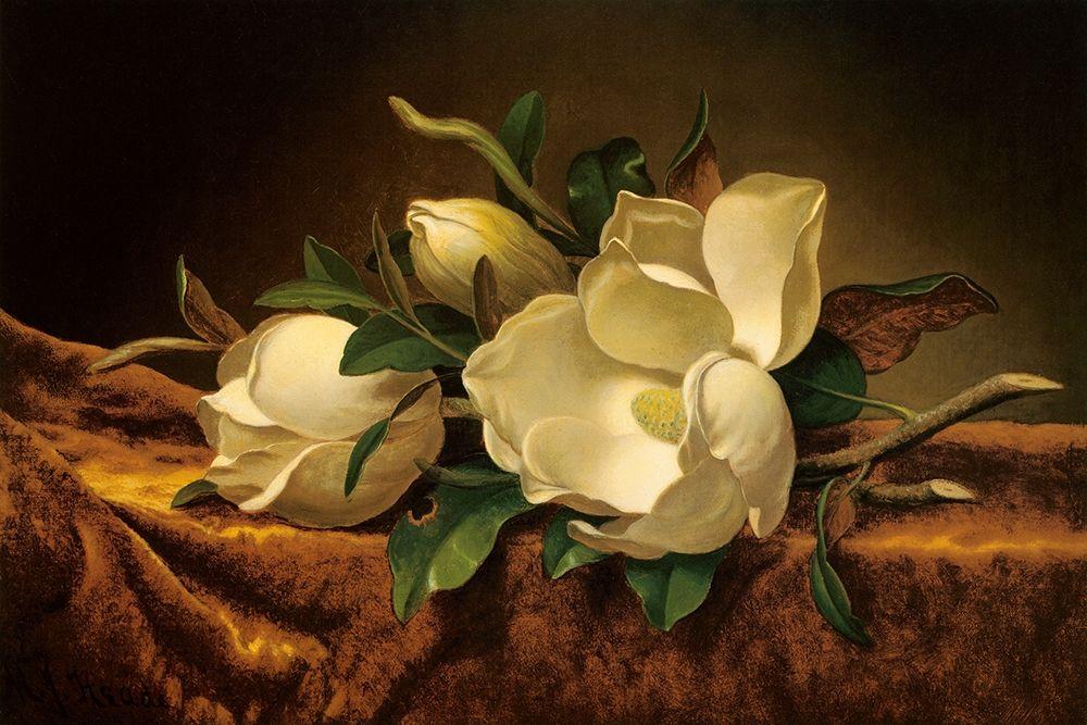 konfigurieren des Kunstdrucks in Wunschgröße Magnolia On Gold Velvet Cloth von Heade, Martin Johnson