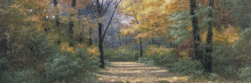 Autumn Road Panel von Romanello, Diane <br> max. 183 x 61cm <br> Preis: ab 10€