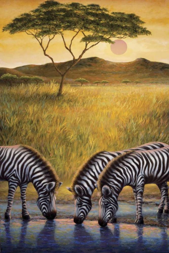Zebra Respite von Sambataro <br> max. 109 x 165cm <br> Preis: ab 10€