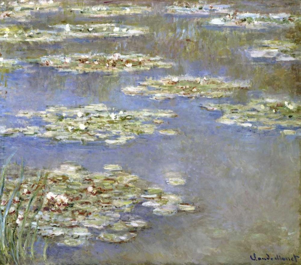 konfigurieren des Kunstdrucks in Wunschgröße Nympheas, 1905 von Monet, Claude
