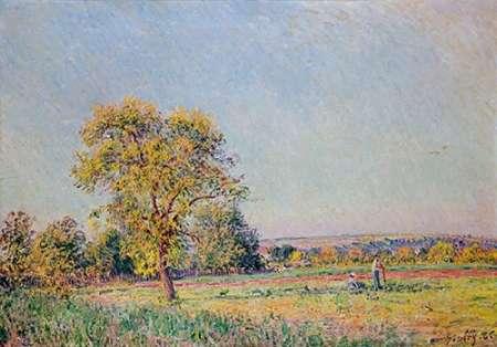 konfigurieren des Kunstdrucks in Wunschgröße A Summers Day von Sisley, Alfred