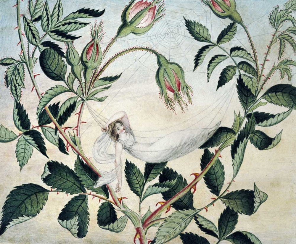 konfigurieren des Kunstdrucks in Wunschgröße A Fairy Resting In a Hammock von Murray, Amelia Jane