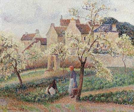 konfigurieren des Kunstdrucks in Wunschgröße Plum Trees In Blossom von Pissarro, Camille