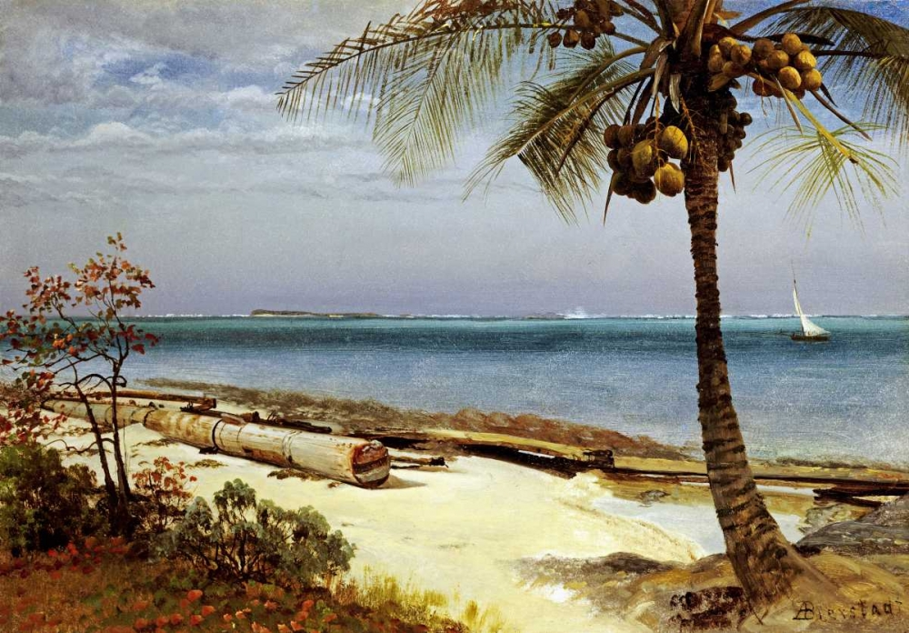 konfigurieren des Kunstdrucks in Wunschgröße Tropical Coast von Bierstadt, Albert