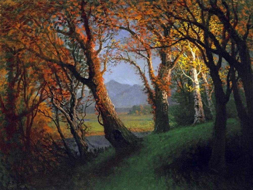 konfigurieren des Kunstdrucks in Wunschgröße Sunset In The Nebraska Territory von Bierstadt, Albert