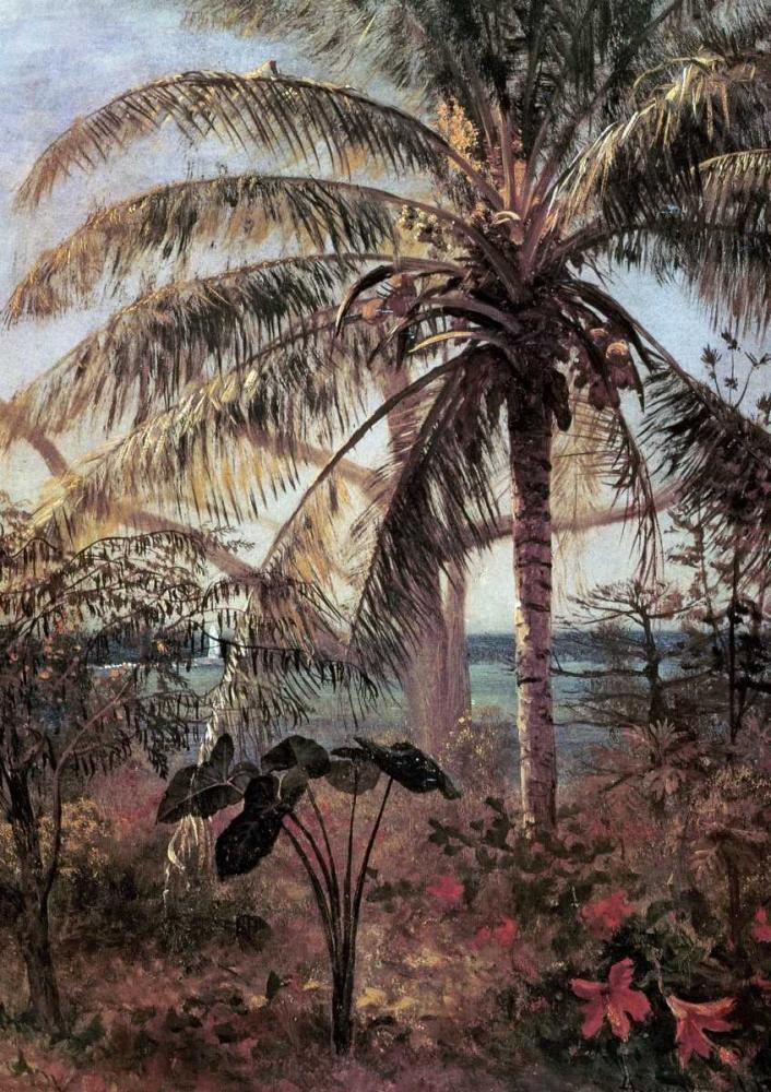konfigurieren des Kunstdrucks in Wunschgröße Palm Tree, Nassau von Bierstadt, Albert