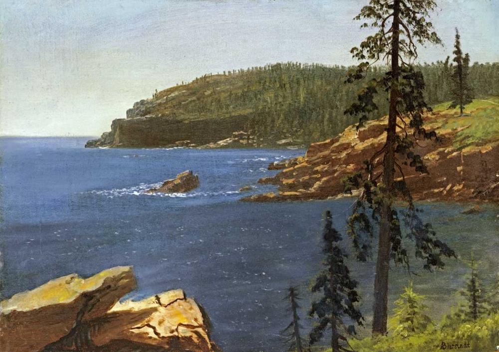 konfigurieren des Kunstdrucks in Wunschgröße California Coast von Bierstadt, Albert