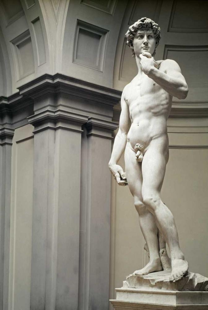 konfigurieren des Kunstdrucks in Wunschgröße David von Michelangelo