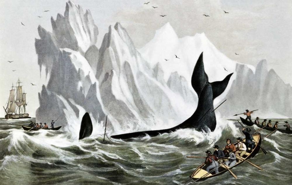 konfigurieren des Kunstdrucks in Wunschgröße Capturing The Whale von Currier and Ives