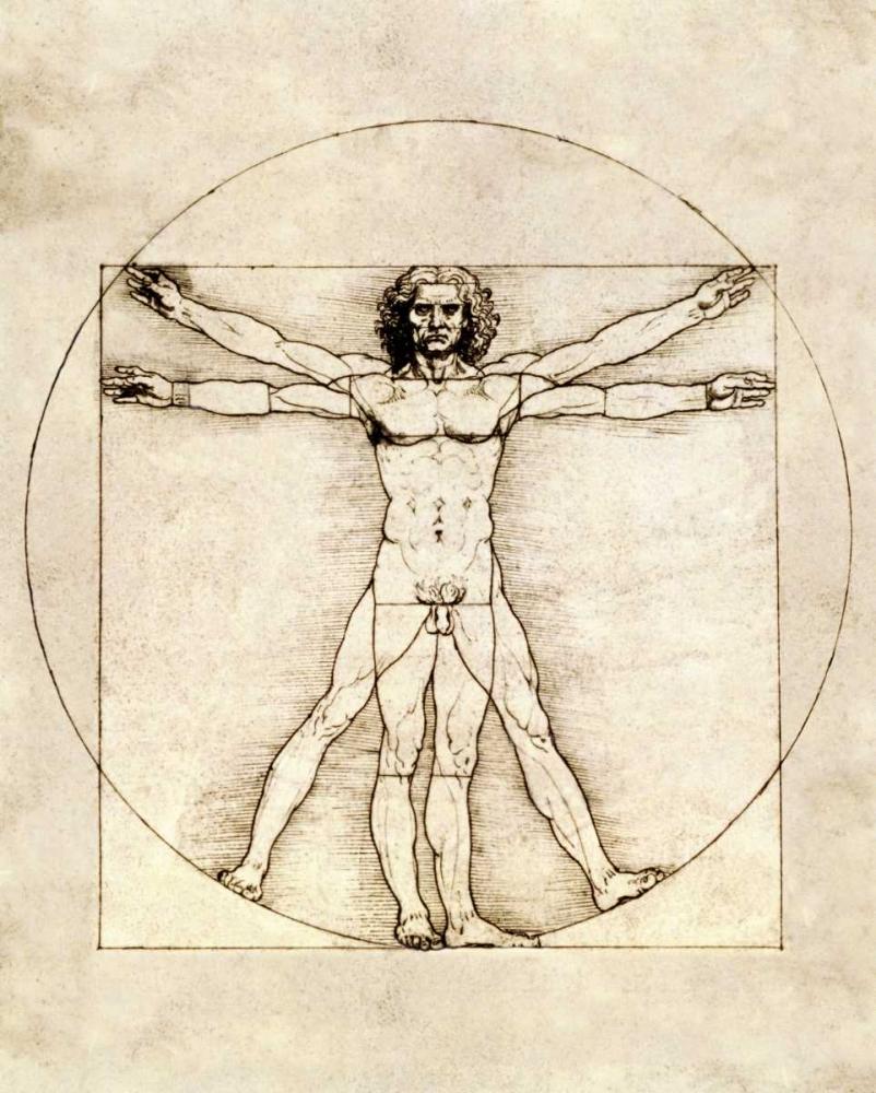 konfigurieren des Kunstdrucks in Wunschgröße Proportions of the Human Figure - Vitruvian Man von Da Vinci, Leonardo