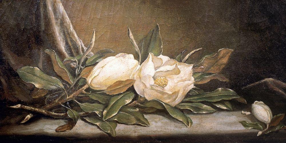 konfigurieren des Kunstdrucks in Wunschgröße White Magnolias On a Blue Cloth von Heade, Martin Johnson