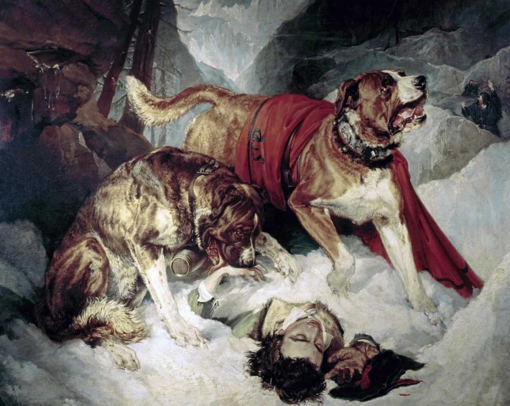 konfigurieren des Kunstdrucks in Wunschgröße Alpine Mastiffs Reanimating a Distressed Traveller von Landseer, Sir Edwin