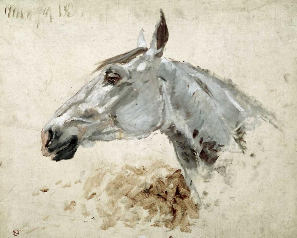 konfigurieren des Kunstdrucks in Wunschgröße Testo Di Cavallo von Toulouse-Lautrec, Henri