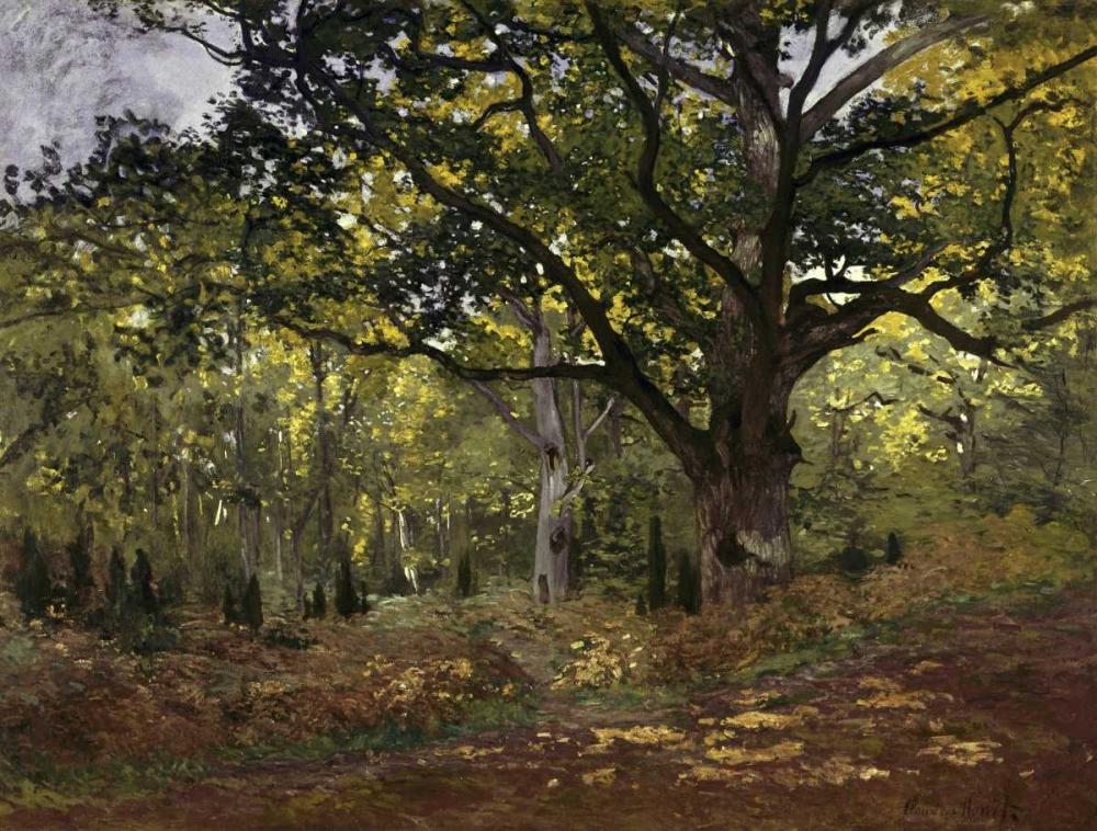 konfigurieren des Kunstdrucks in Wunschgröße Bodmer Oak, Fontainebleau Forest, 1865 von Monet, Claude